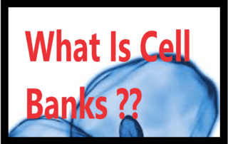 What Is Cell Banks