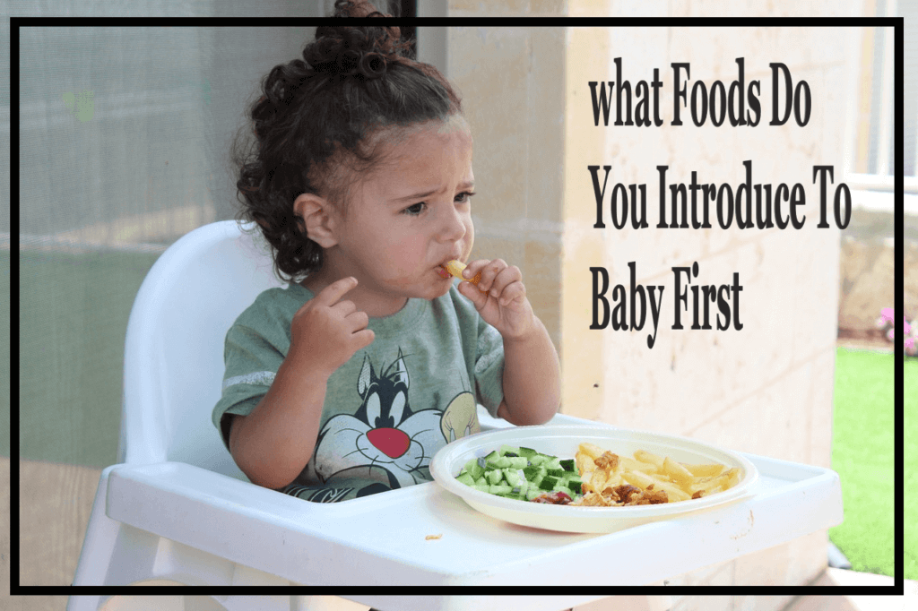 what Foods Do You Introduce To Baby First